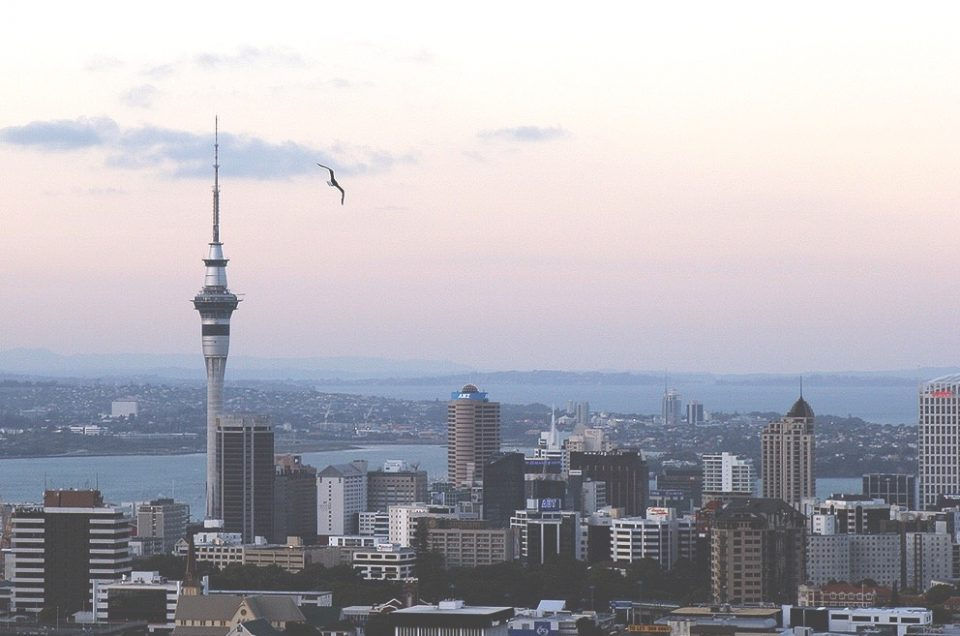 25 things to do around Central Auckland